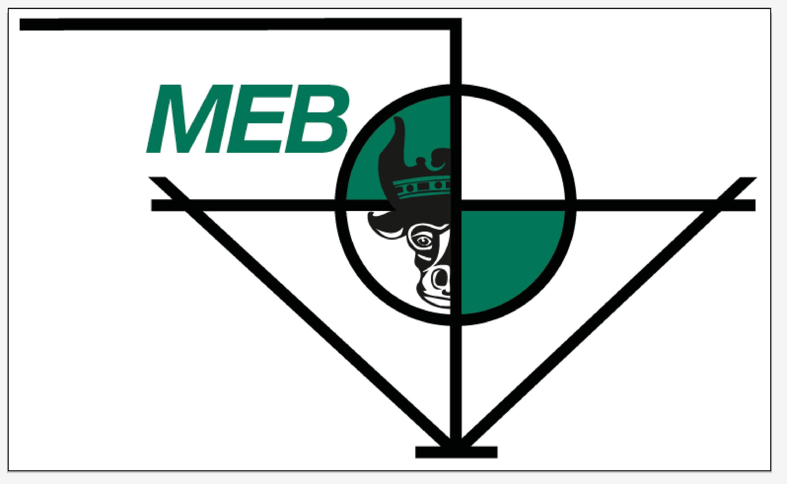 MEB Schwerin GmbH